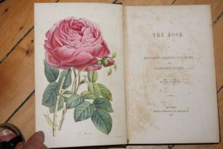 The Rose: Its History, Poetry, Culture and Classification.